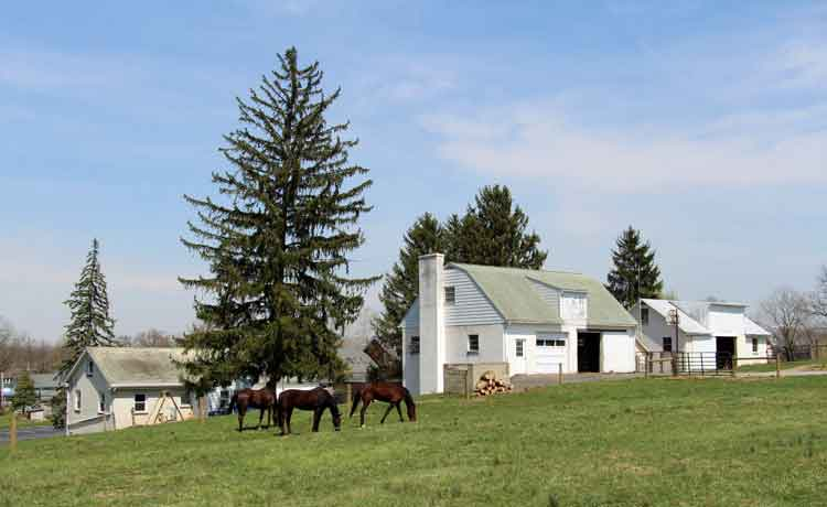 Amish Bed & Breakfast in Lancaster Pennsylvania