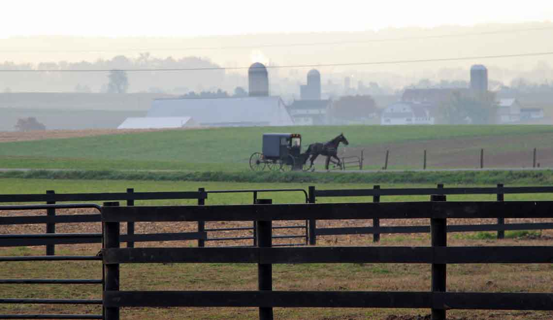 Pleasant View Farm early morning Amish buggy traffic