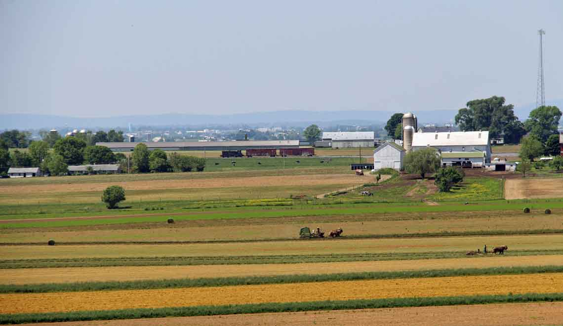 view of Amish farmland from lodging